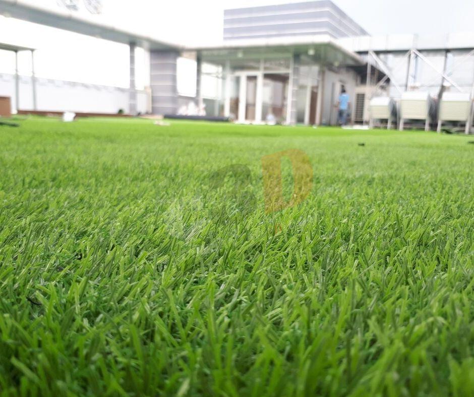Thảm cỏ nhân tạo sân vườn D20-9