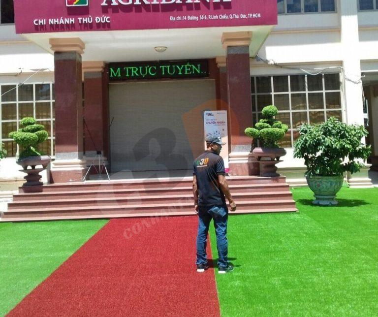 Thảm cỏ nhân tạo trải sân trước ngân hàng Agribank
