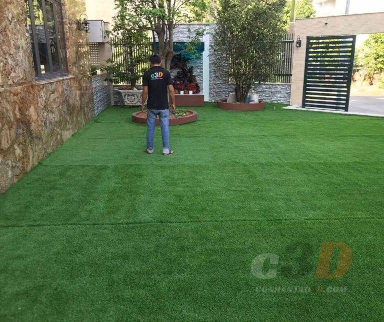Thảm cỏ trải sân vườn biệt thự
