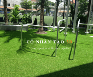 Thảm cỏ nhân tạo trường Q2