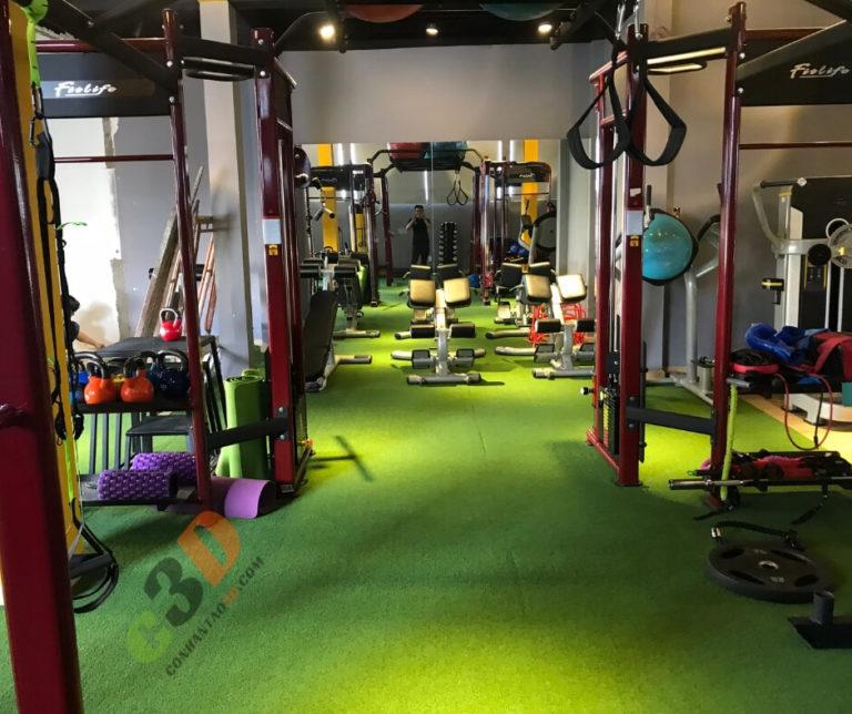 Thảm cỏ nhân tạo phòng Gym