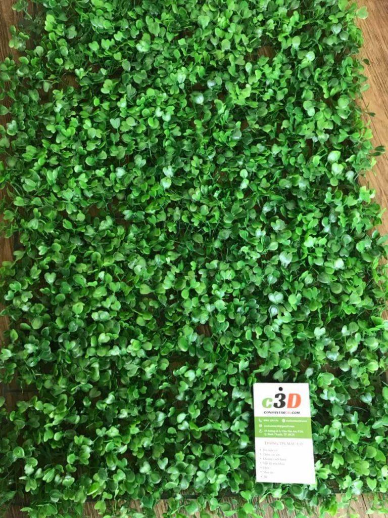 cỏ nhựa tấm dán tường xà lách xoong