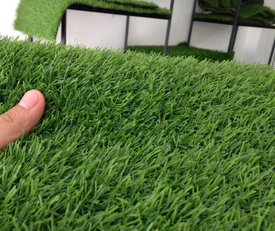 thảm cỏ nhân tạo F20