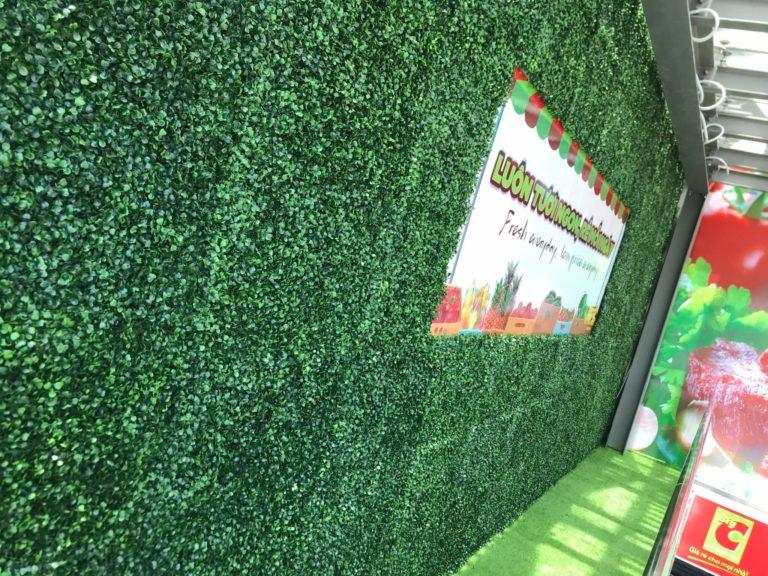 Tường cỏ xà lách xoong