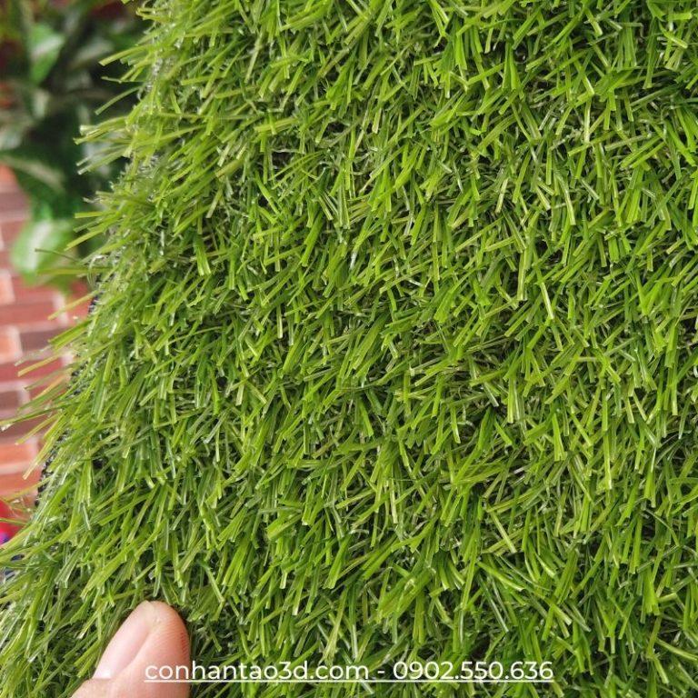 Thảm cỏ nhân tạo sân vườn D20